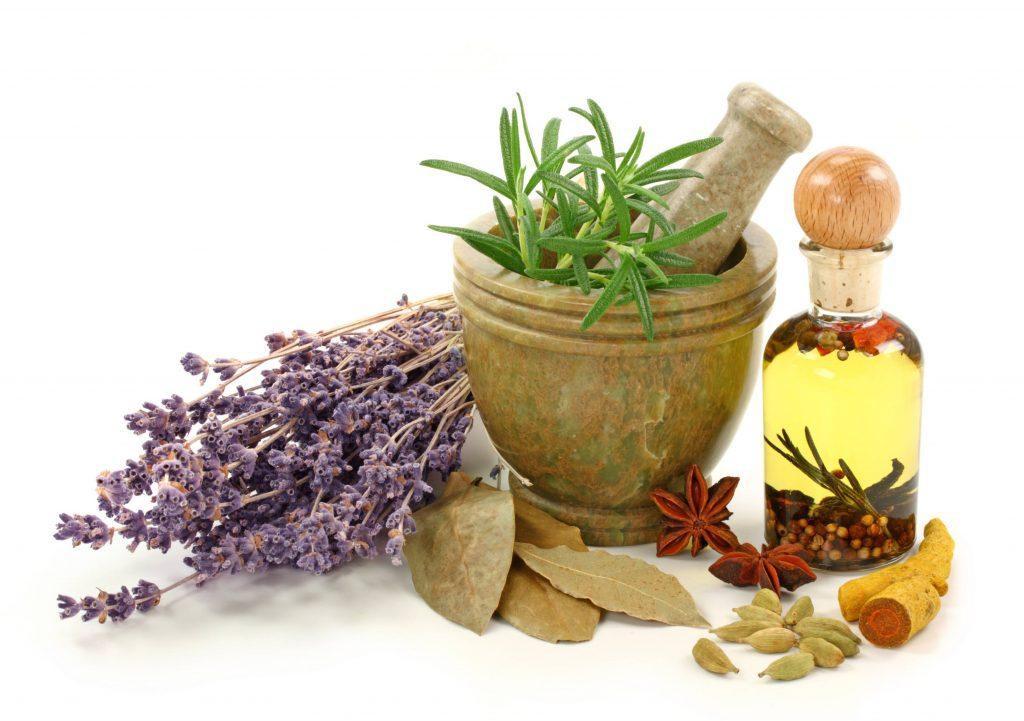 شناخت انواع گیاهان دارویی و فواید مصرف آنها