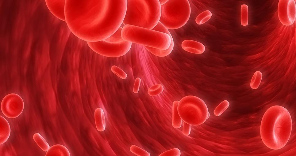 چه كنيم تا به كم خونى مبتلا نشويم؟