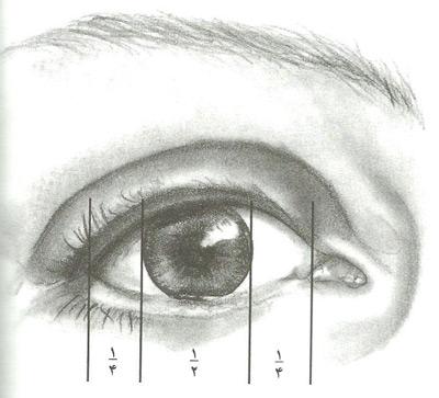 اصول طراحی چهره, آموزش طراحی چهره