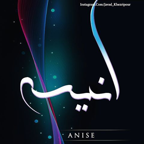اسم نوشته انیسه