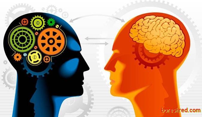 شباهت فوق العاده مغز انسان با کامپیوترها آینده /با هوش مصنوعی