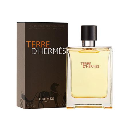 خرید ادکلن هرمس تق مردانه فرانسوی (Terre D-Hermes)