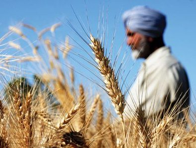 📌 حمایت از تولید داخلی در هند