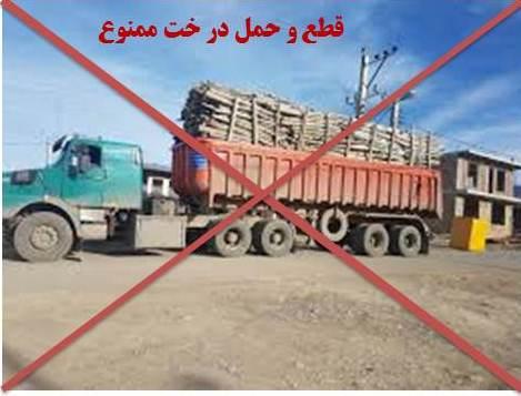 درخواست محیط زیست برای ممنوعیت صدور مجوز قطع و حمل درختان باغی