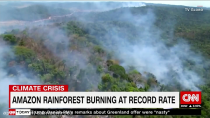 آتش عمدی در جنگل های آمازون