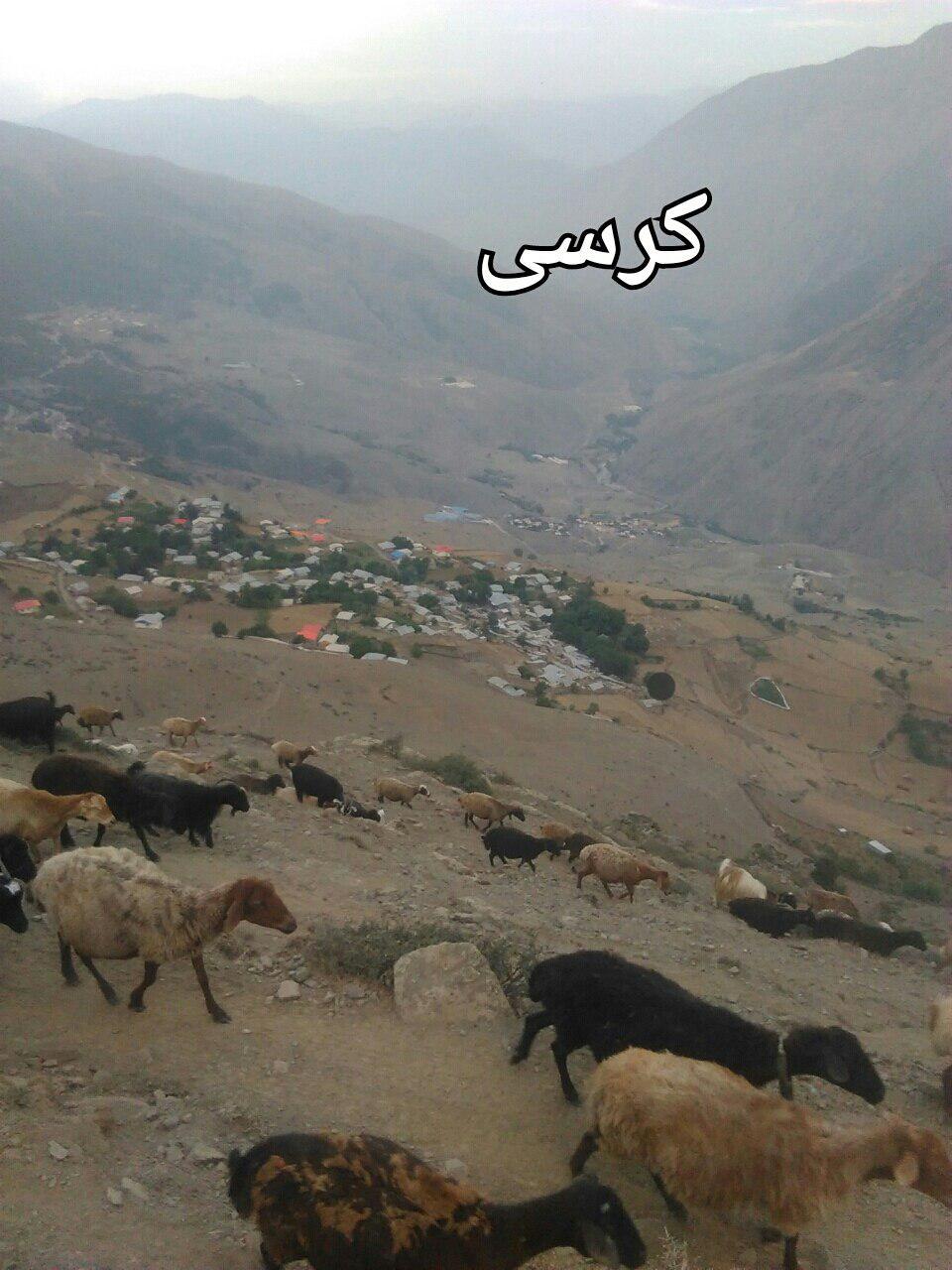 روستای کرسی