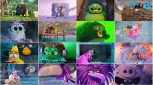 دانلود مستقیم انیمیشن The Angry Birds Movie 2 2019