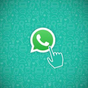 گروه واتساپ کناف کاران تهران