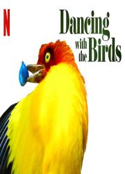 دانلود مستند رقص با پرندگان Dancing with the Birds 2019 BluRay