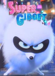دانلود انیمیشن سوپر گیجت Super Gidget 2019 BluRay