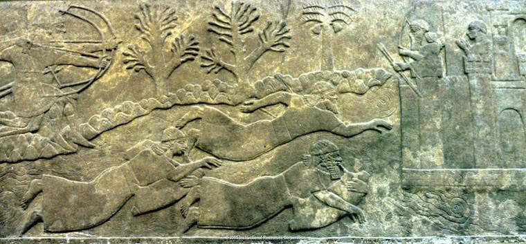 تاریخچه شنا در دنیا