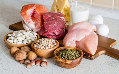منبع پروتئین،بهترین منبع پروتئین