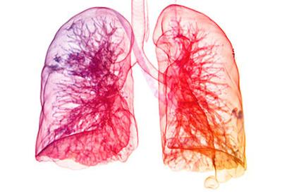 مواد شوینده، سلامت بدن و ریه ها
