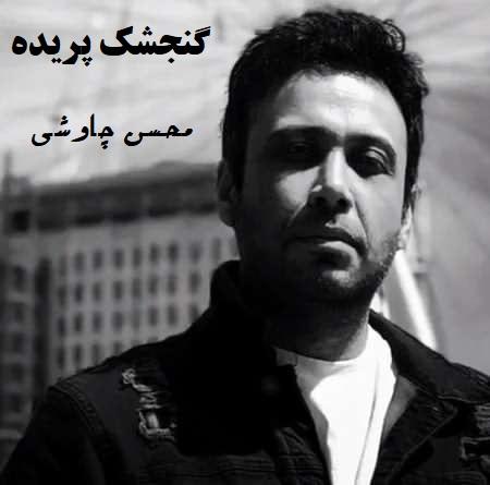 نسخه بیکلام آهنگ گنجشک پریده از محسن چاوشی