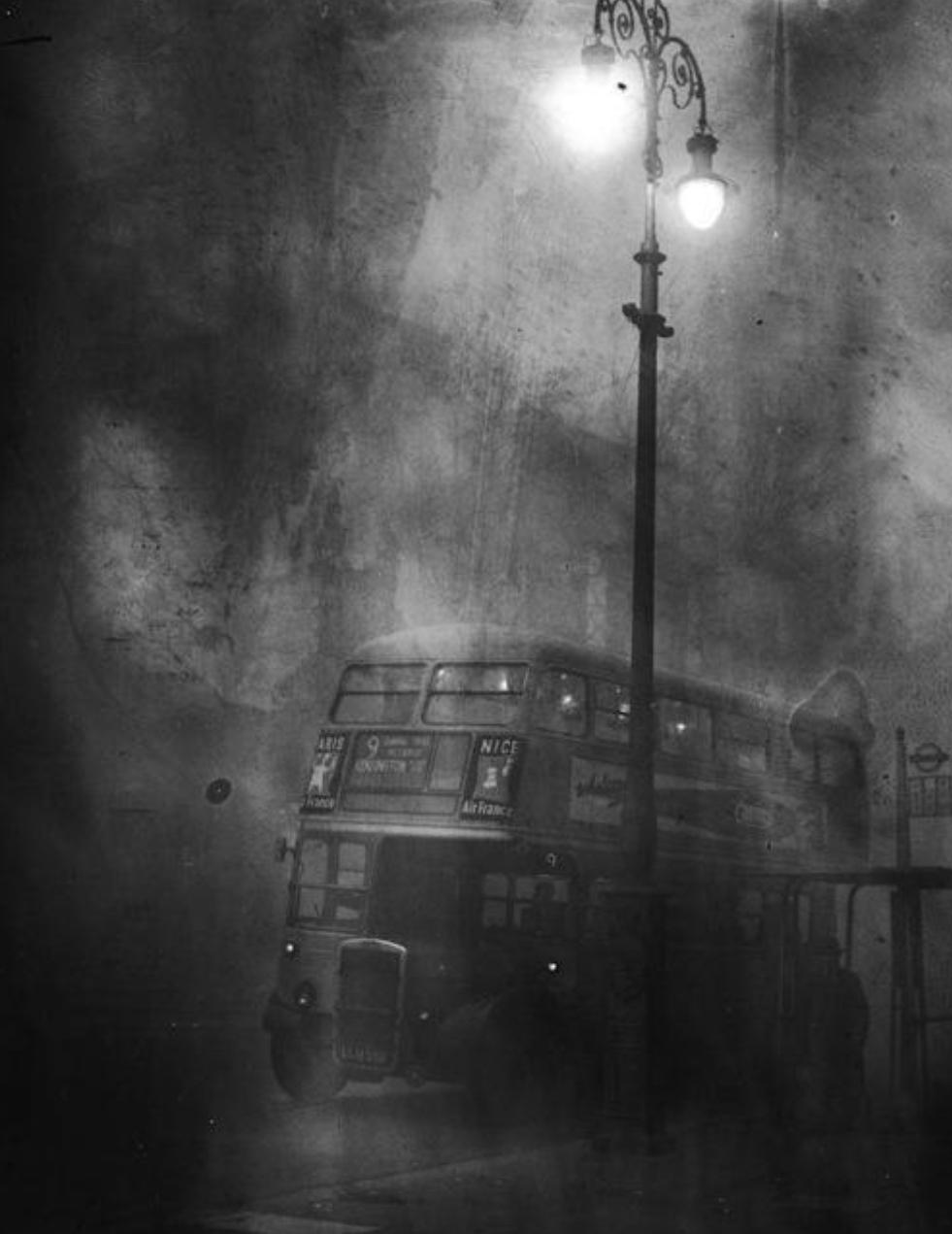 داستان دنباله دار زیبای اتوبوس شبرو بخش 2