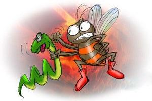 داستان کوتاه و آموزنده « مار و زنبور»