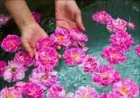 گلاب چه خواصي دارد؟ / گلاب تقويت کننده قلب و معده