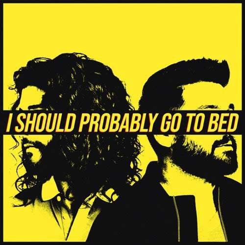 متن و ترجمه آهنگ I Should Probably Go To Bed از دن + شی