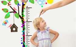 راهي براي افزايش قد کودک / کودک قد بلند