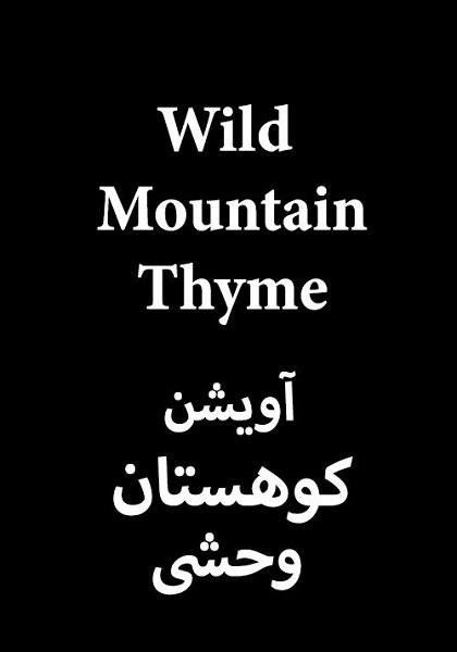دانلود فیلم آویشن کوهستان وحشی با دوبله فارسی Wild Mountain Thyme 2020