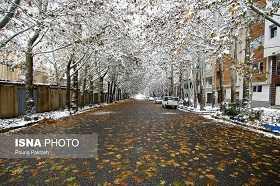 کاهش شديد دما و بارش برف در خراسان جنوبي