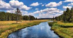 ديدن رودخانه در خواب چه تعبيري دارد؟