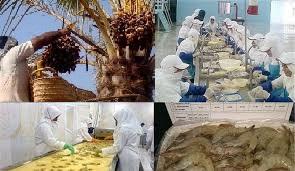 پیگیری و بررسی موانع طرحهای اشتغال زایی در استان با همکاری گروه های جهادی