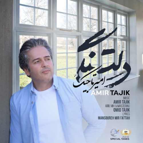 دانلود آهنگ جدید امیر تاجیک بنام دلتنگی با کیفیت عالی