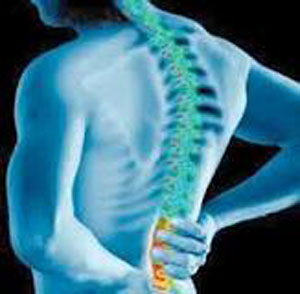 درمان درد کمر, ورزش کمر درد