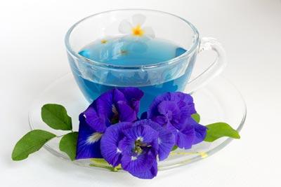 گیاهان دارویی برای کمخوابی,گل بنفشه,خواص گل بنفشه