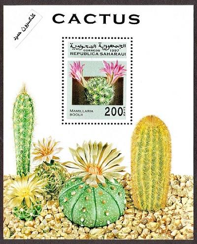 صحرا (3).jpg (400×495)