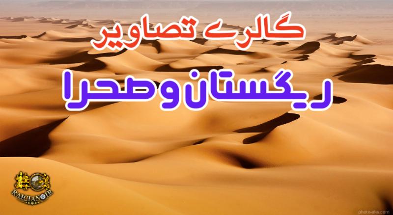 گالری تصاویر ریگستان و صحرا