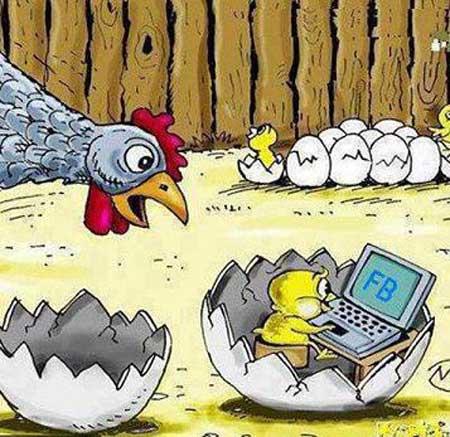 امان از دست این دنیای مجازی....جوجه  فسقلی ام فیسبوک داره!!!!