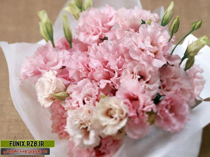 گل ها، بهترین هدیه برای بانوان