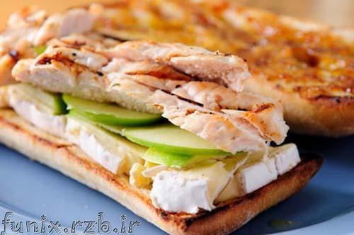 طرز تهیه ساندویچ مرغ مخصوص پیک نیک