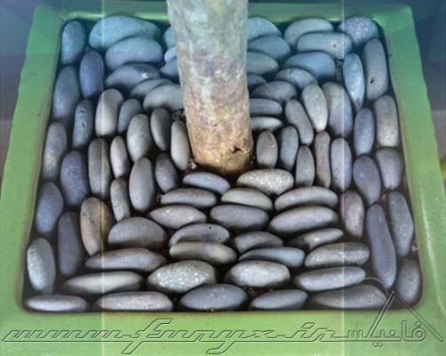 ایده هایی برای استفاده از سنگ در دکوراسیون