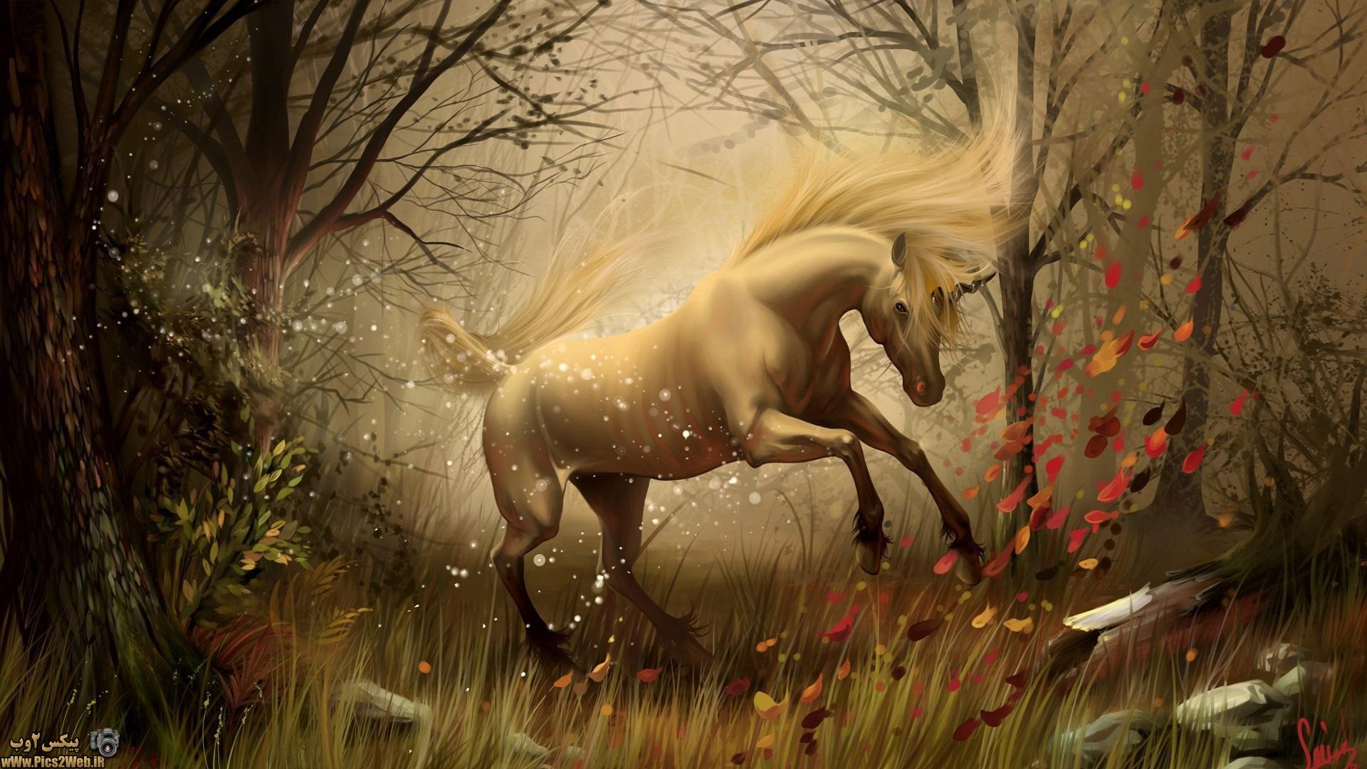 عکس اسب تک شاخ